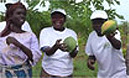 Planting Fruit Trees in Africa
